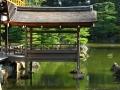 japan-kyoto-goldentemple-boatp-559790227-o
