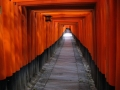 japan-kyoto-torpark-tunnel_res-559798913-o