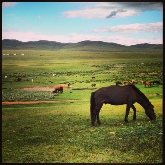 A Father and Son Voyage: Mongolia
